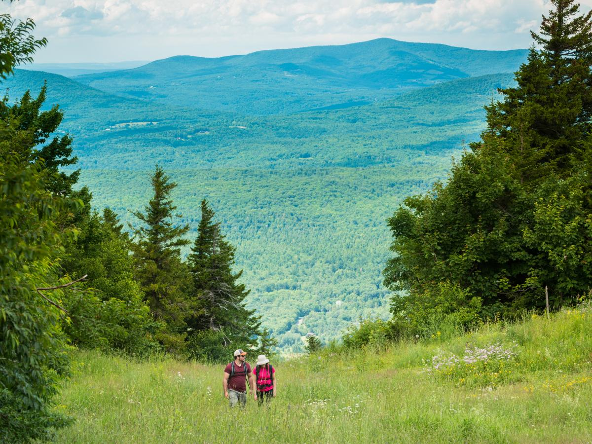 Best Catskills Hiking Trails A Guide To Our Favorite Upstate Ny Hikes