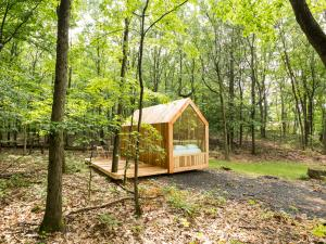 Gather Greene Glamping cabin in Coxsackie, NY