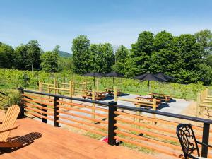 Outdoor seating area with covered picnic tables at The Vineyard at Windham