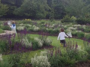 kids playing at the Mountain Top Arboretum