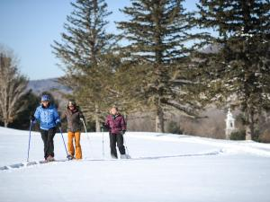Skiiers on Windham Mountain