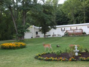 Pine Ridge Farm Guest and Carriage House