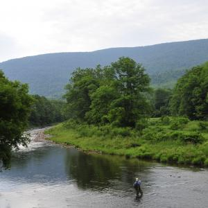 fishing in the Catskills
