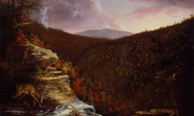 From the Top of Kaaterskill Falls by Thomas Cole