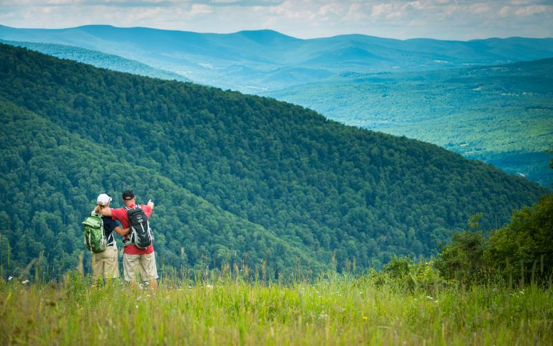 Best Catskills Hiking Trails | A Guide to Our Favorite ... on catskill albany map, catskill mt map, catskill ski resorts map, catskill ski areas map, catskill rail trail, catskill ny map, catskill escarpment, catskill scenic trail, catskill forest map, catskill park new york, village of catskill map, catskill state park map, catskill park waterfalls map, catskill high peaks map, catskill mountains, catskill forest preserve, catskill topographic map,