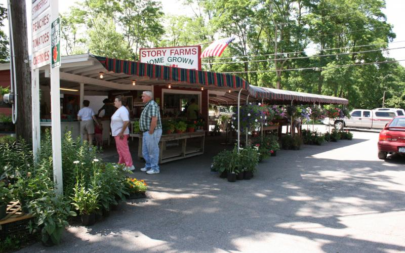 From Our Farm to Your Table | Great Northern Catskills of